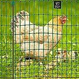 VOSS.farming Premium Hühnerzaun 112cm farmNET 50m | Hühnernetz Geflügelnetz...